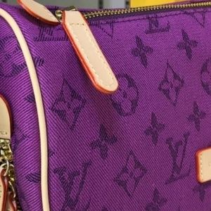 Louis Vuitton Waist/Shoulder Bag